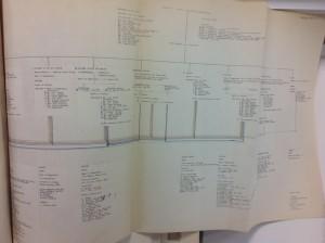 DipAD Staff Structure 1